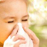 Ингаляции небулайзером при аллергии в домашних условиях